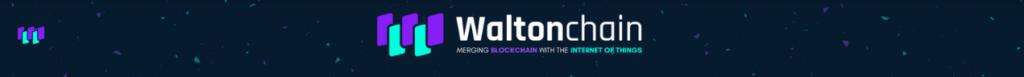 2018年 Waltonchainが小売業に革命を起こす!!